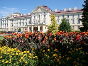 szent_istvan_egyetem
